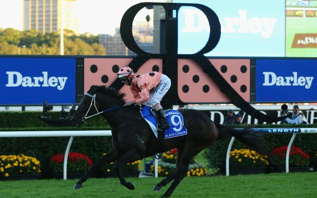 Black Caviar sets yet another Australian racing record