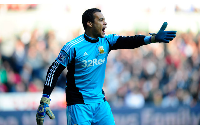Michel Vorm Swansea City