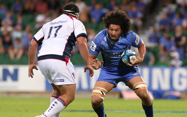 Sam Wykes Western Force