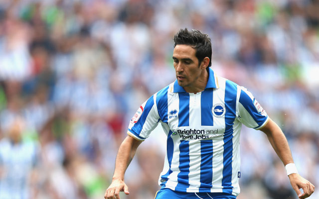 (Video) Brighton and Hove Albion can win promotion to the Premier League, says Vicente