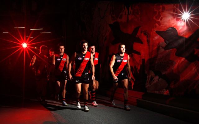 Essendon lawyers call for a halt to ASADA investigation