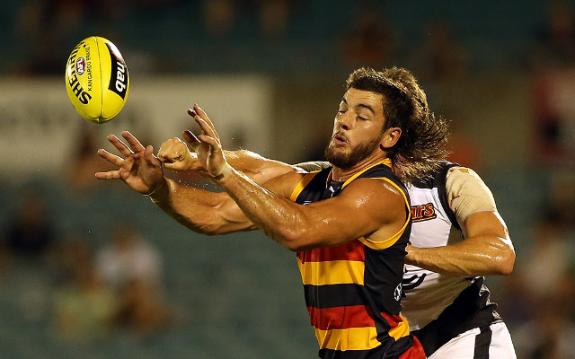 Taylor Walker knee injury: Adelaide Crows star has scans after training session