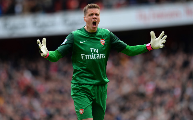 Arsenal goalkeeper Wojciech Szczesny injured in Poland training