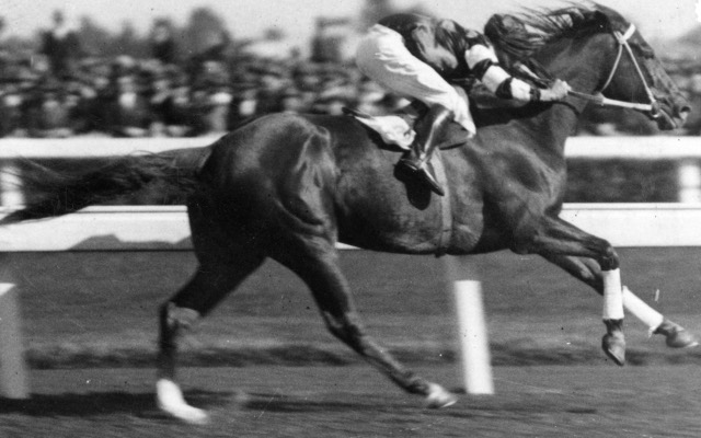 Science to show why Phar Lap was the grestest ever