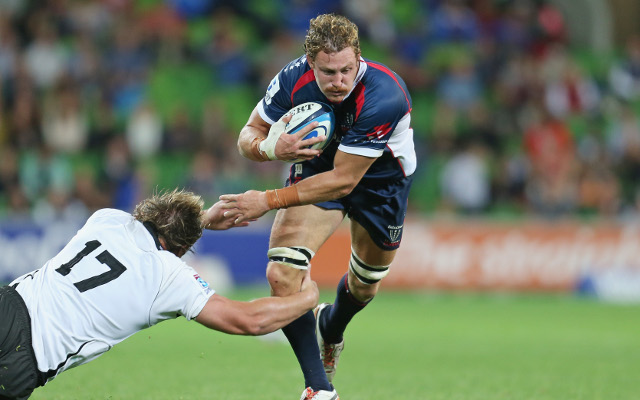 Wallabies backrower to quit Melbourne Rebels following 2015 World Cup