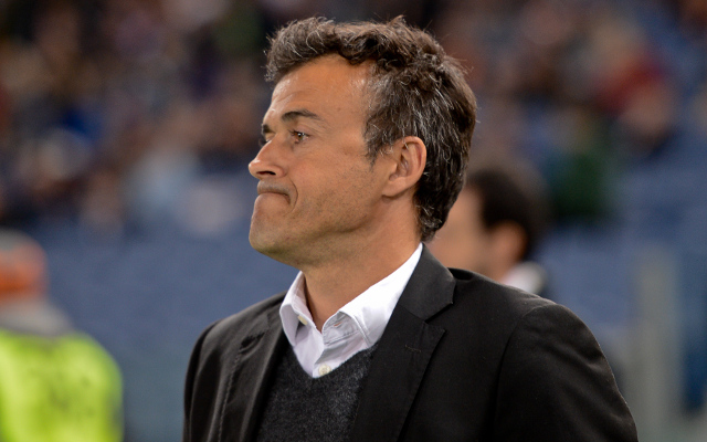 FC Barcelona appoint Luis Enrique as new manager