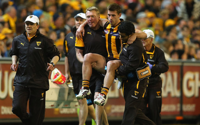 Brendan Whitecross to miss AFL grand final due to knee injury