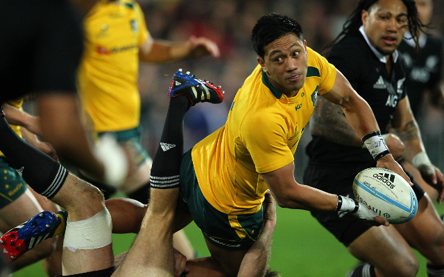 Wallabies remain united despite winless start to Rugby Championship