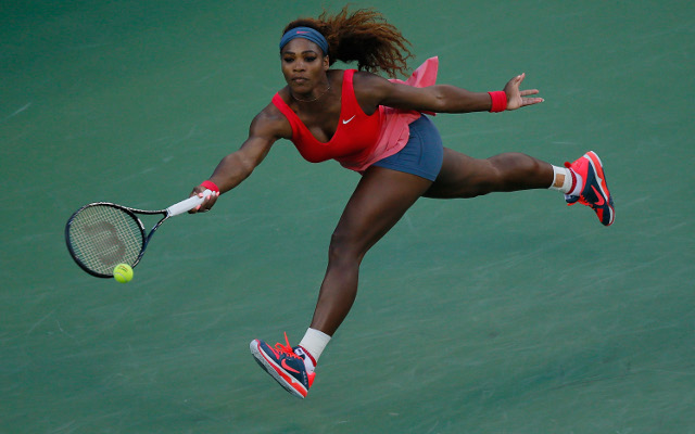Serena Williams to finish season as world number one