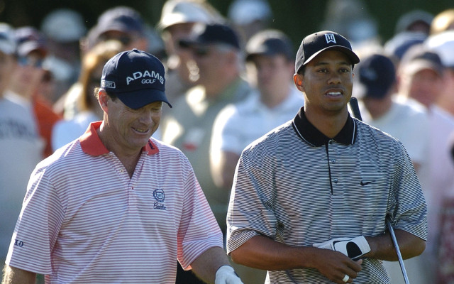 US Ryder Cup captain denies he has a problem with Tiger Woods