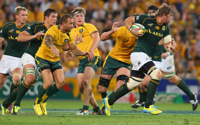 Springboks urged to stay hungry despite demolition job on Wallabies