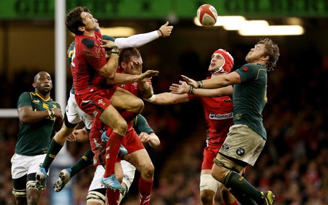 Springboks continue Wales' woes against southern hemisphere teams