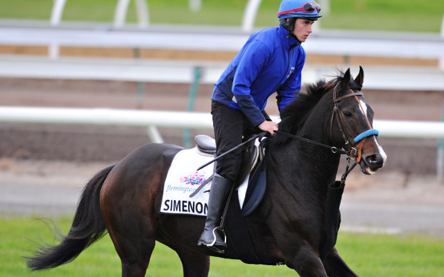 Simenon flying the flag for Ireland in the Melbourne Cup