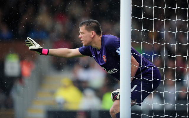 Arsene Wenger confirms new Arsenal signing will challenge Wojciech Szczesny