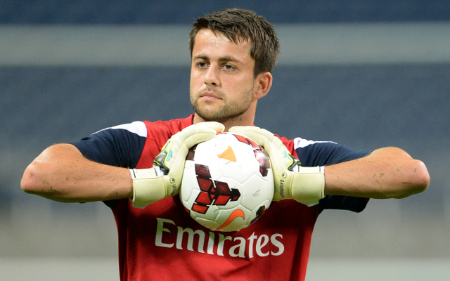 Power ranking Arsenal's last four goalkeepers: Lukasz Fabianski will not be missed