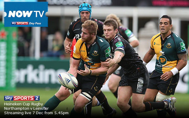 Private: Northampton v Leinster: Heineken Cup live stream guide and preview