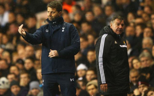 Five big decisions for new Tottenham head-coach Tim Sherwood