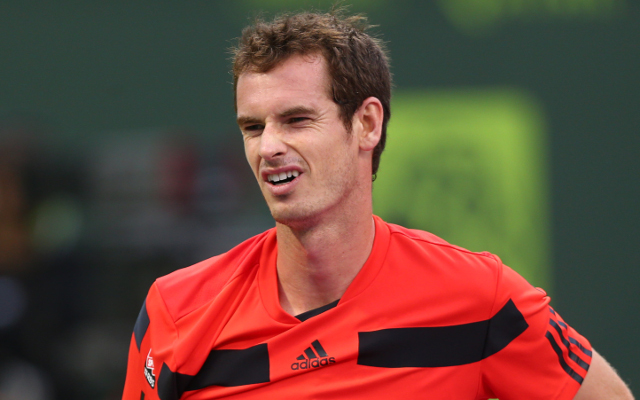 Australian Open 2015: Andy Murray says semi-final opponent Tomas Berdych is too old to change bad habits