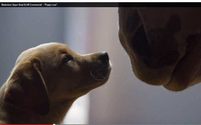 "(Video) Budweiser Super Bowl XLVIII Commercial – ""Puppy Love"" Super Bowl 2014 ads"