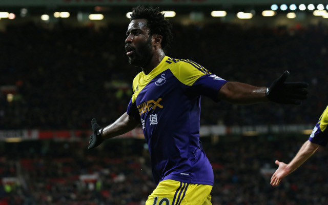 Liverpool want Wilfried Bony as they prepare for life after Luis