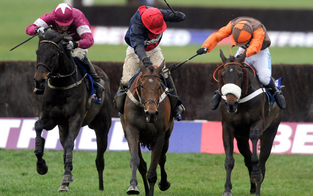 Private: Cheltenham Gold Cup 2014 preview as Bobs Worth goes into the race as favourite