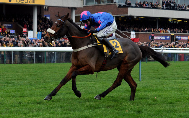 Private: One of the favourites for the Gold Cup drops out of 2014 Cheltenham Festival due to injury