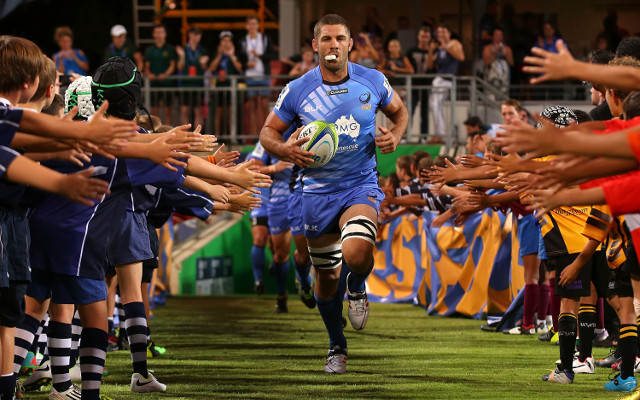 Super Rugby: Western Force captain Matt Hodgson ruled out of large chunk of 2015 season