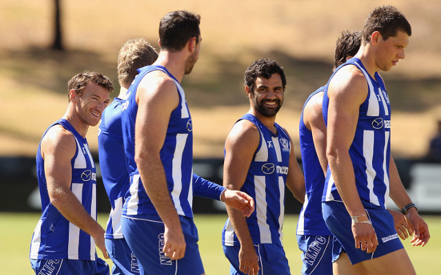 North Melbourne v. Hawthorn Hawks: watch AFL live streaming – game preview