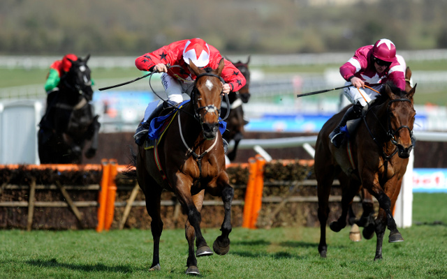 Private: Preview of the Neptune Novices Hurdle at the 2014 Cheltenham Festival