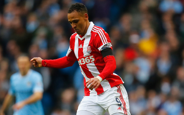 Stoke 1-0 Hull City: report and Premier League video highlights