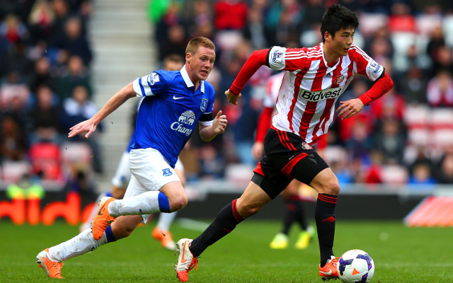 Sunderland 0-1 Everton: Premier League match report, goals and highlights