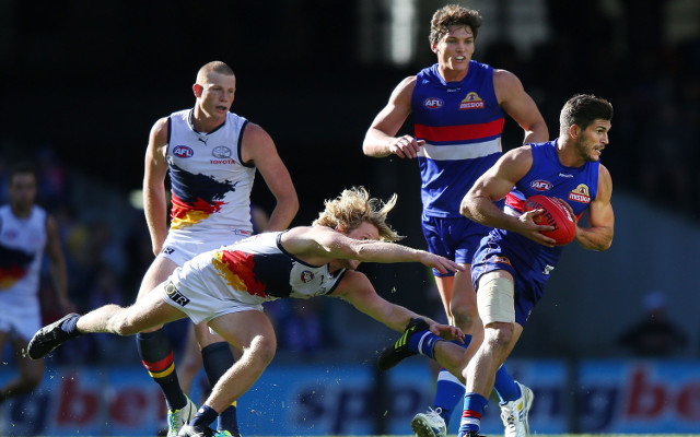 Adelaide Crows v Western Bulldogs: AFL live scores, ladder, highlights – match report