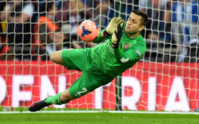Ouch! Fabianski slags off Arsenal after leaving this summer for Swansea