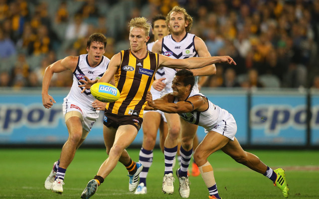 (Video) Hawthorn Hawks v Fremantle Dockers: AFL full match highlights