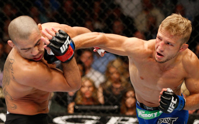 Why TJ Dillashaw's win over Renan Barao is proof that MMA is amazing
