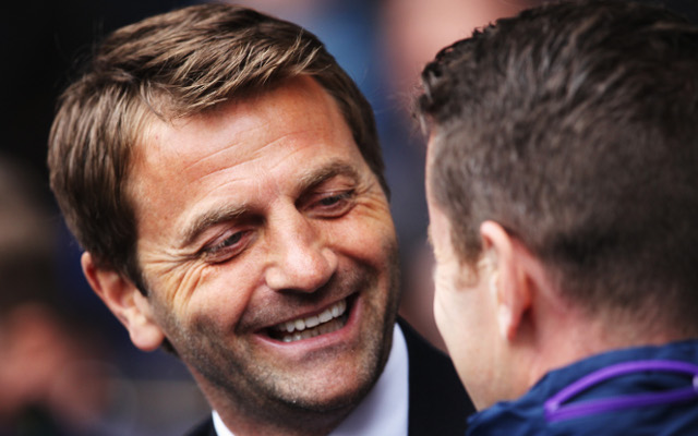 Under-pressure Tottenham Hotspur boss Tim Sherwood gives a fan his seat in the dugout during final-day victory over Aston Villa