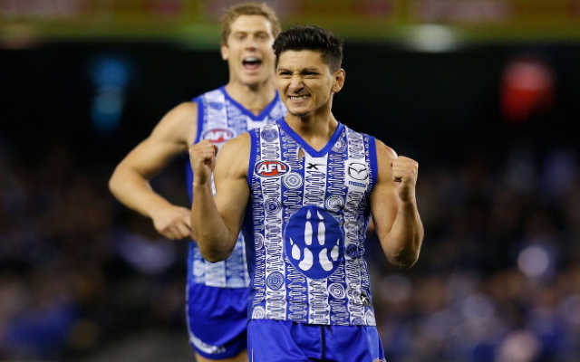 North Melbourne's Robin Nahas to miss up to seven weeks