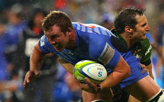 Western Force re-sign young back-rower Angus Cottrell