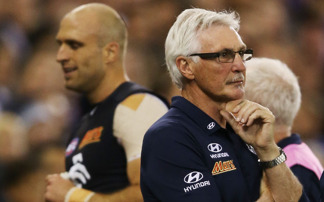 Carlton Blues v. Geelong Cats: watch AFL live steaming – game preview