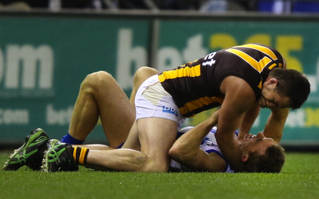 (Video) Hawthorn's Brian Lake sent straight to the AFL tribunal after ugly dust up with Drew Petrie