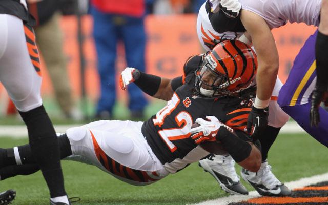 Cincinnati Bengals release running back BenJarvus Green-Ellis