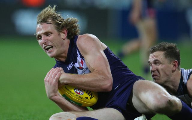 (Video) Round 20 AFL Highlights – Geelong Cats v Fremantle Dockers