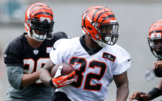 Cincinnati Bengals running back injures shoulder in preseason loss
