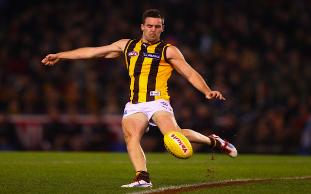 Hawthorn rule star defender out of AFL finals clash with Geelong
