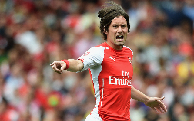 Arsenal's Tomas Rosicky admits to hesitant performance against Everton