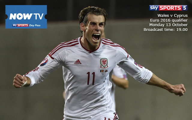 Private: Wales v Cyprus: live stream guide and Euro 2016 qualification preview