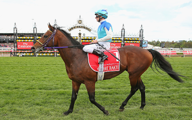 Favourite Admire Rakti & Araldo die following tragic 2014 Melbourne Cup
