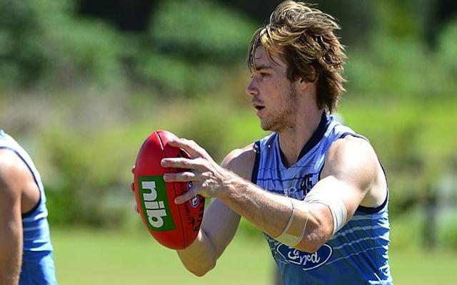 Western Bulldogs sign former Geelong Cats defender ahead of 2015 AFL season