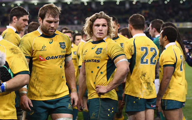 Wallabies face hefty bill after damaging change rooms in loss to Ireland