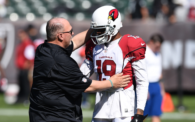 (Video) Arizona Cardinals WR Ted Ginn Jr. makes sideline catch